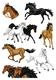 Schmucketikett MAGIC Pferde, Stone Stone glittery 1Bl 1Pack