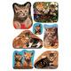 Schmucketikett Decor Katzen Fotos 3Bl 1Pack