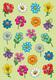 Schmucketikett Magic lustige Blumengesichter 1Bl 1Pack